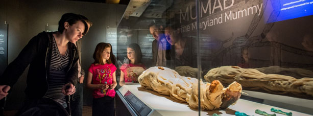 Family looking at mummies exhibit
