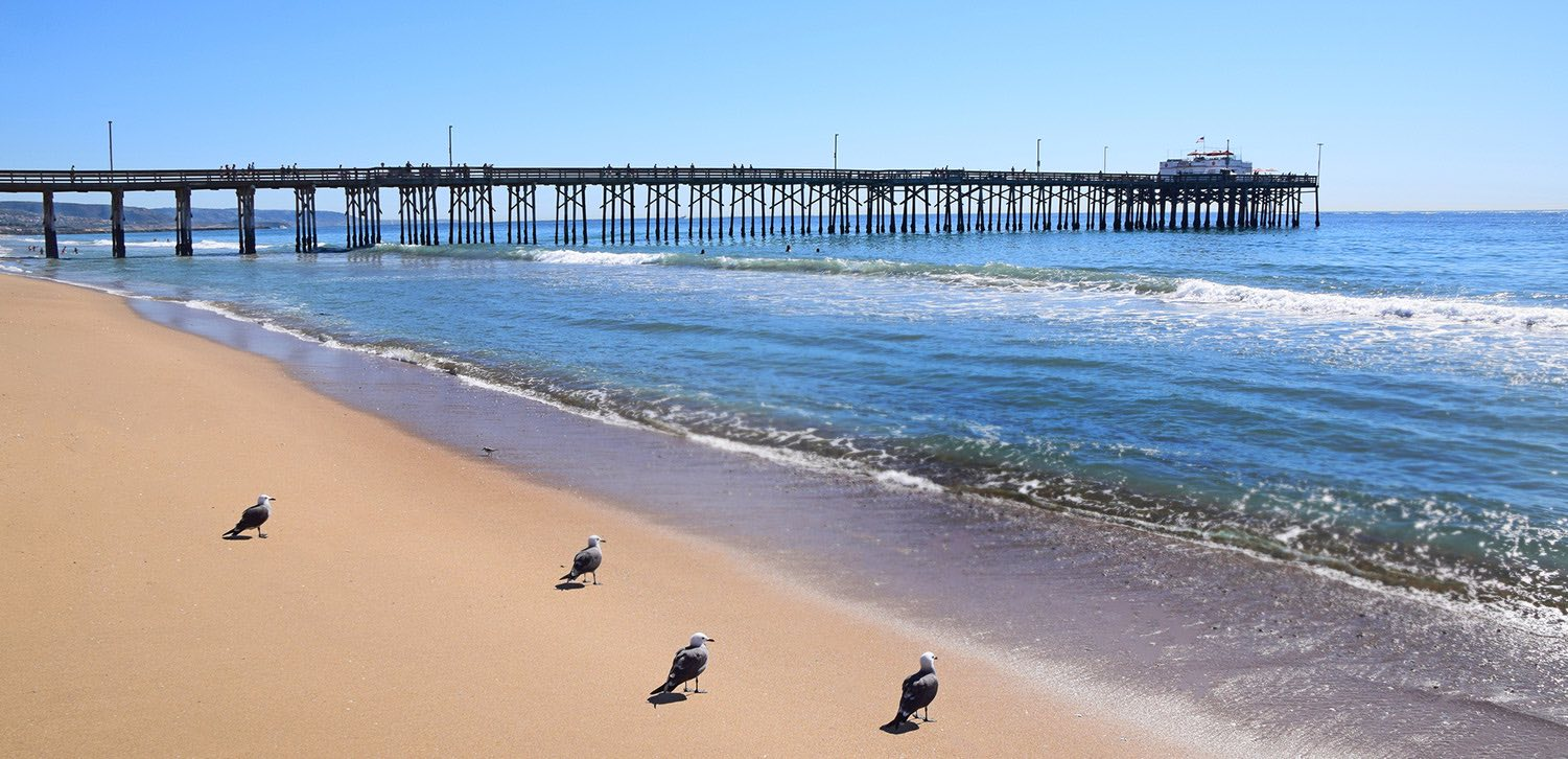 Beachfront Hotels In Newport Beach Ca