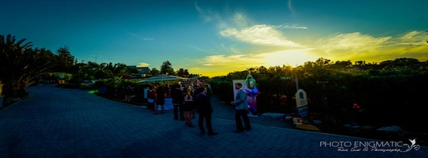 Vineyard wine tasting at sunset