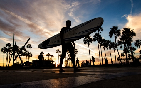 Silhouette of man holding surfboard with palm trees & sun setting in the back