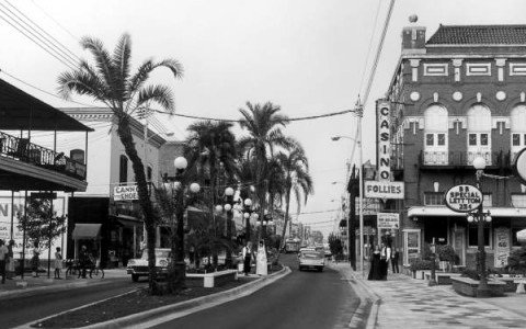 black and white image of a street with palm trees in median and small buildings