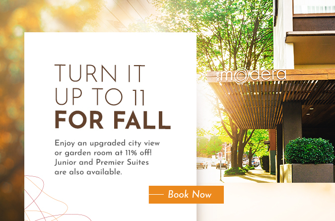 11% off upgraded suites popup