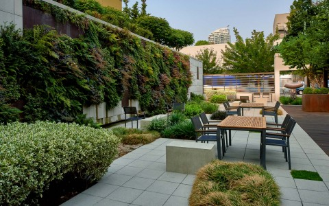 Outdoor space with living green wall
