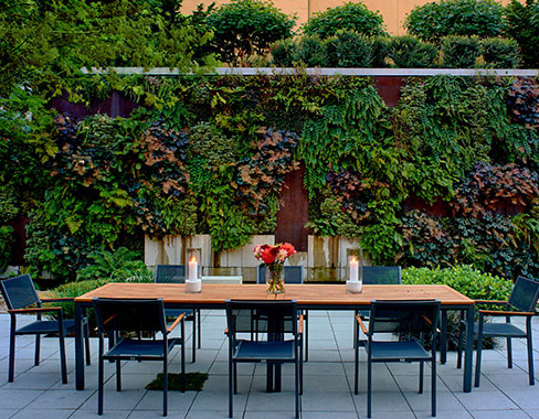 courtyard table in front of the living green wall at Hotel Modera