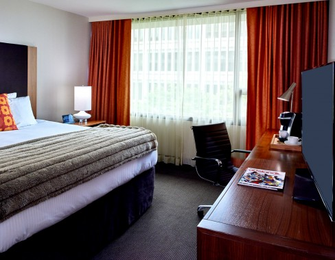Premier City King Room