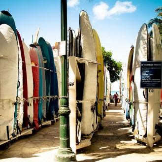 surfboards standing upright in rows