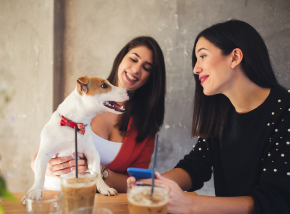 women at a table with their drinks and dog