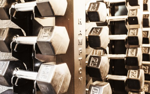 gym hand weights