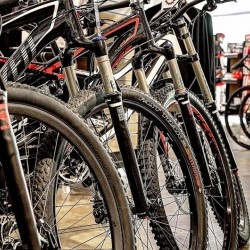 row of mountain bikes lined up