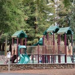 Cuesta Park, children's play outdoor play area surrounded by large trees.