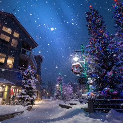 Snowy Street with Christmas Trees and shops and colorful lights