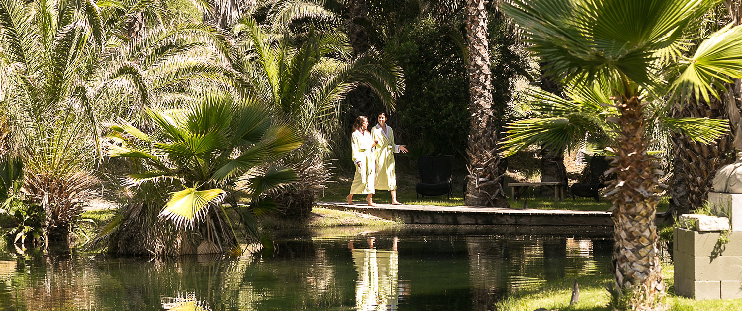 Two women walking by a lake surrounded by palm trees