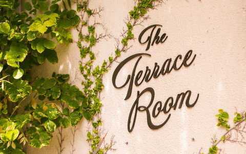 close up of a building called the terrace room with ivy on the walls