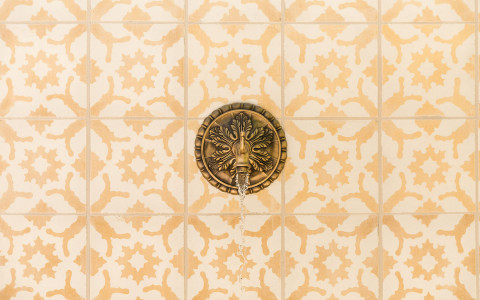 an ornate gold shower spout on a wall with a white and light orange patterned tile