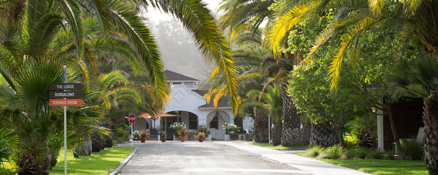 an exterior shot of indian springs calistoga with palm trees around it