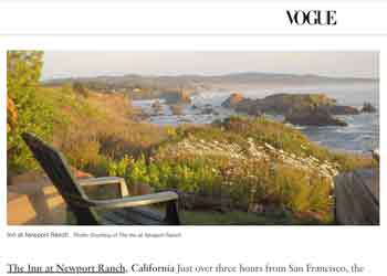 vogue article screenshot