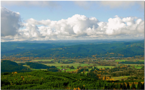 willamette valley wine country oregon