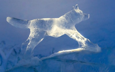 Animal Ice Sculpture