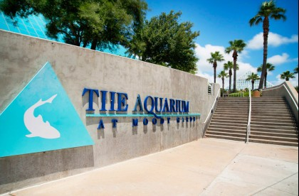 Exterior Aquarium At Moody Gardens signage