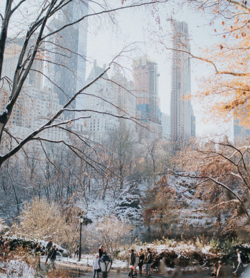 people walking in central park in the wintertime