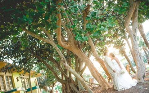 Wedding couple kissing in between trees