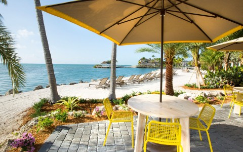 outdoor lunch area with bright yellow chairs and umbrella's for shade