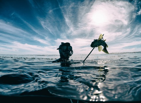 a photo of a man who is spearfishing