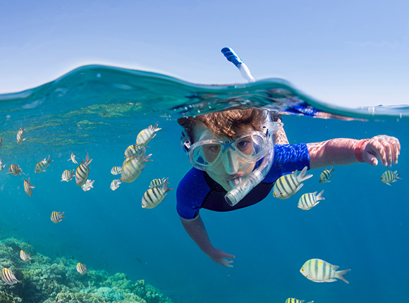 little kid snorkeling with a school of fish
