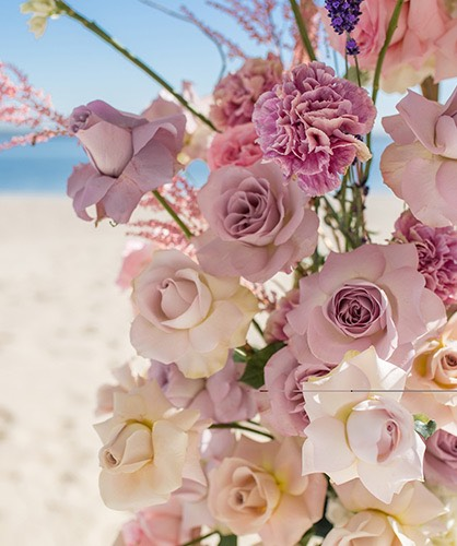 pink roses bouquet with the beach in the background