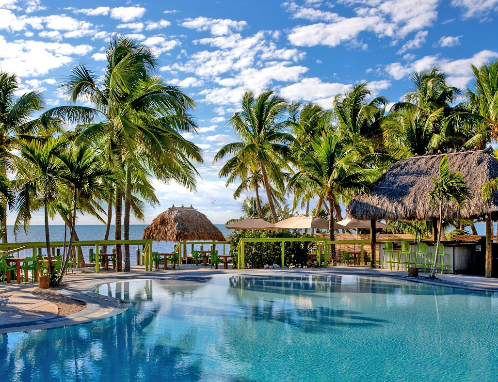 la siesta pool surrounded by palm trees with a view of the ocean