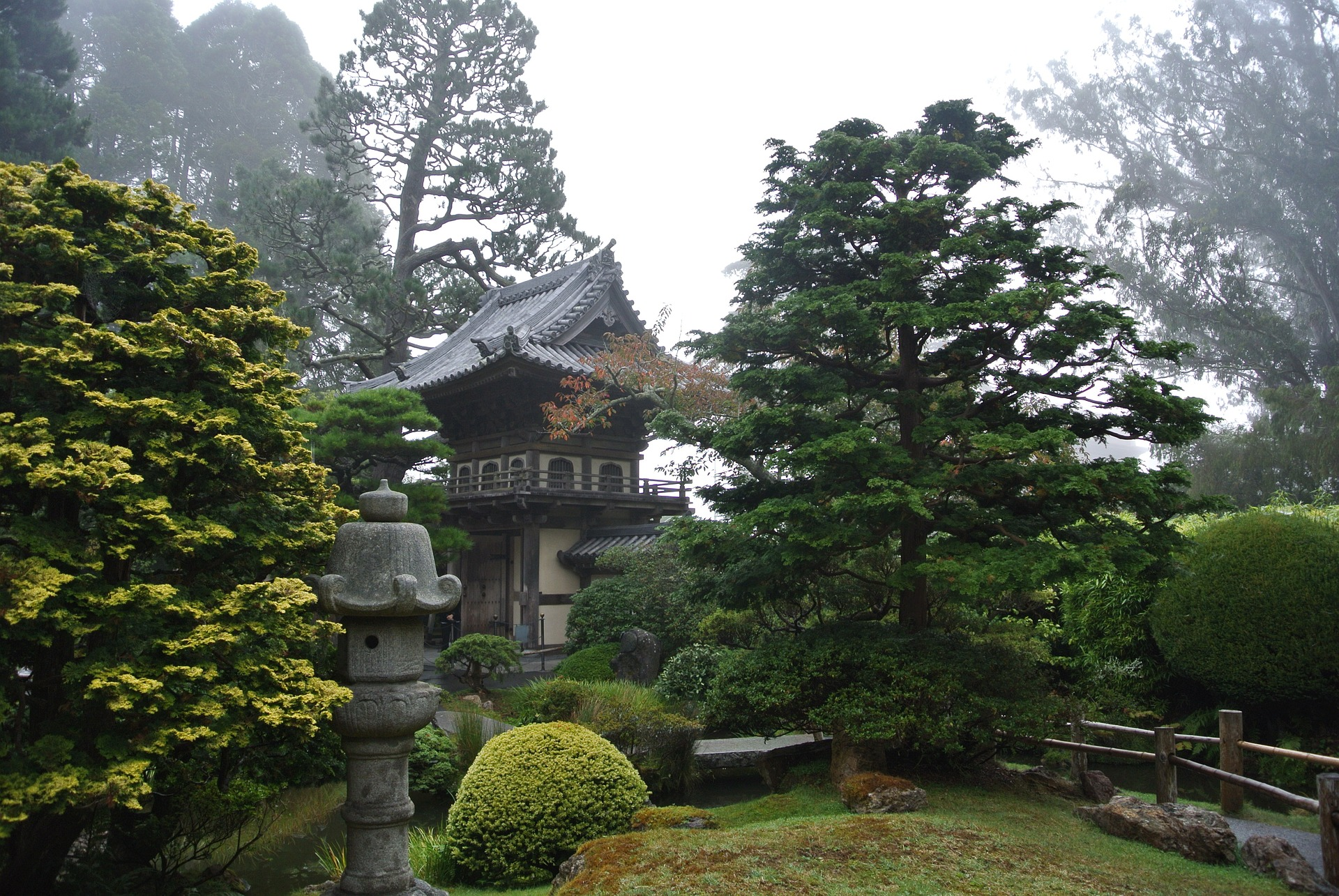 Japanese garden with pagoda tucked among trees
