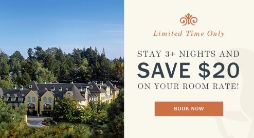 Stay 3 Nights and Save $20