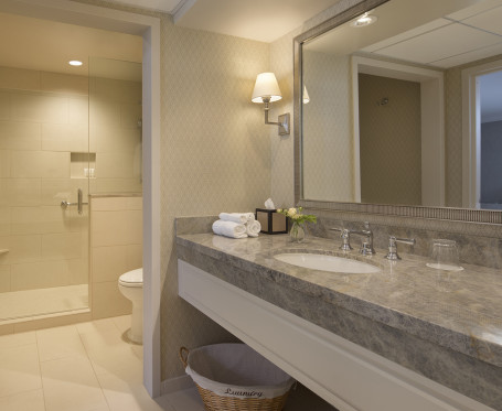 a stone countertop bathroom next to a shower and toilet