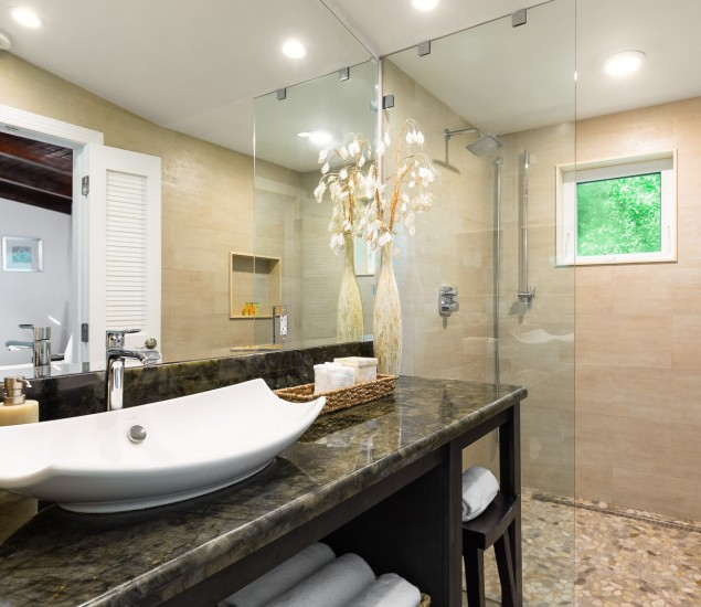 bathroom with large sink area and walk in glass shower