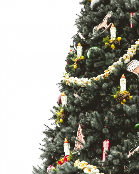Christmas tree hung with popcorn garlands candles candy canes and other decorations dominating half of frame against a background of pure white