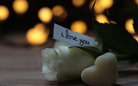 i love you note on a white rose