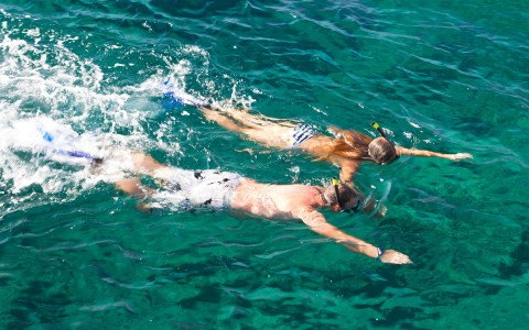 a man and woman snorkeling