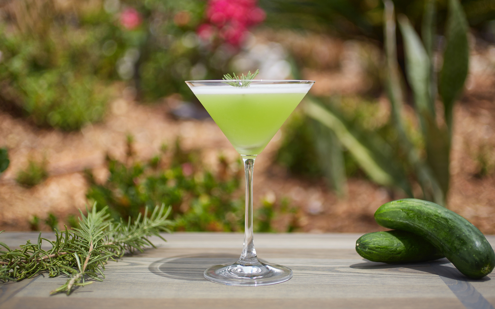 Green frothy cocktail in martini glass