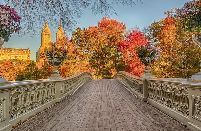 Manhattan bridge in central park with trees in fall colors