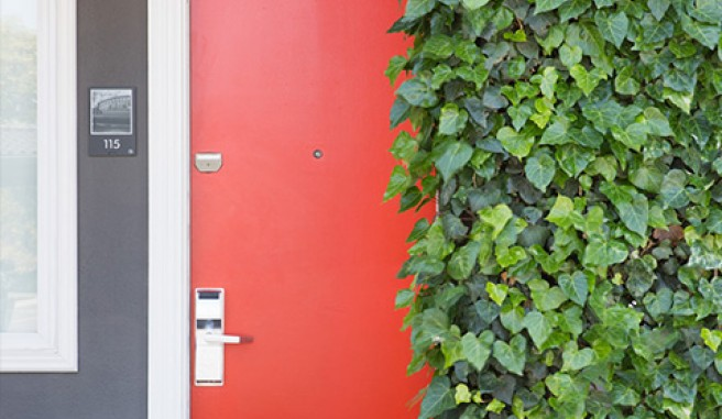 bright red exterior door with ivy climbing up wall Header