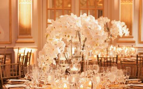 Event space set up with tall white flower centerpieces on tables