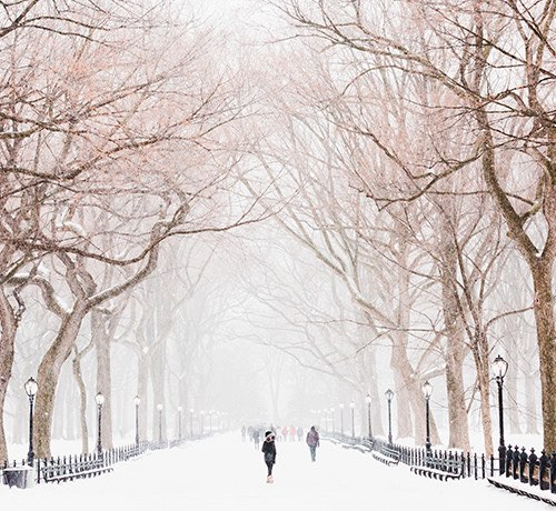People walking through central park in the snow Inset
