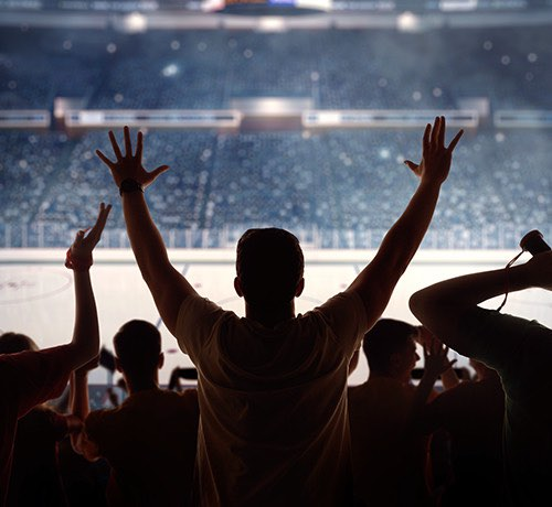 Silhouette of a crowd watching a hockey game Inset
