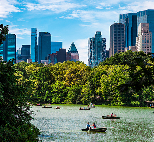 people kayaking in central park