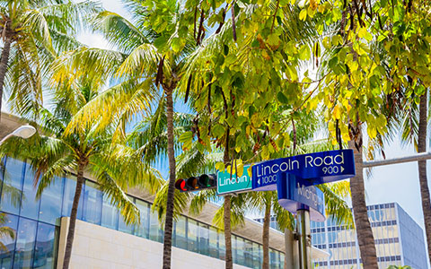 lincoln road street sign underneath trees