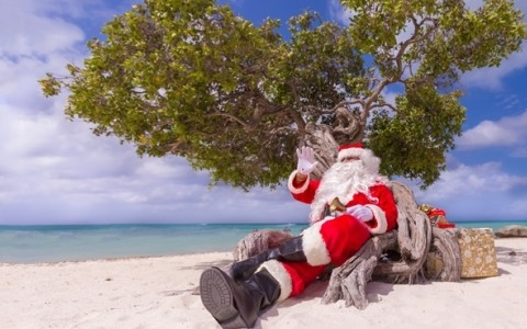 The Holiday For Children In Aruba