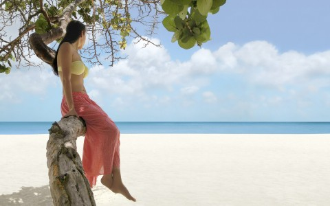 Woman sitting on tree branch on the beach