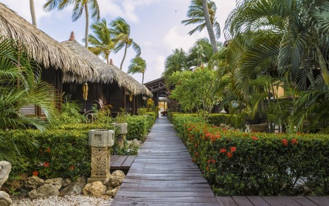 Wooden pathway surrounded by greenery & tiki huts