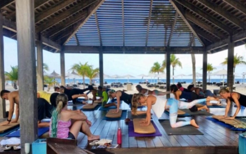 Have You Tried Terrawave Yoga Yet?