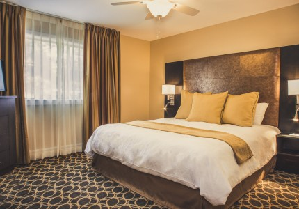 guestroom with king bed with white and gold bedding and a large window
